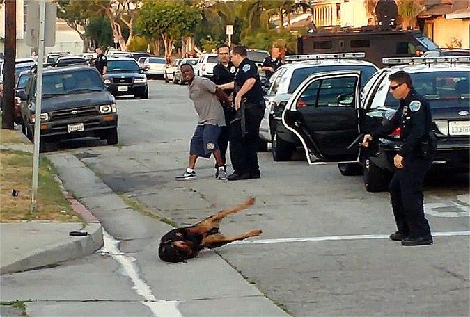 Sahibini korumak isteyen köpek polis tarafından vuruldu