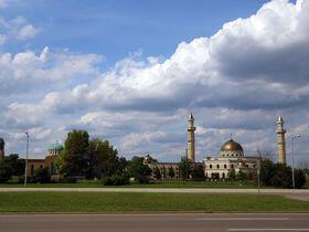 Detroitli Müslümanlar kendilerini ülkelerinde gibi hissediyor