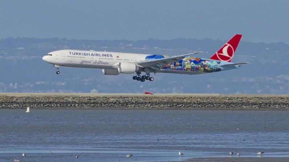 Türk Hava Yolları'nın başarısı Harvard'da ders oldu