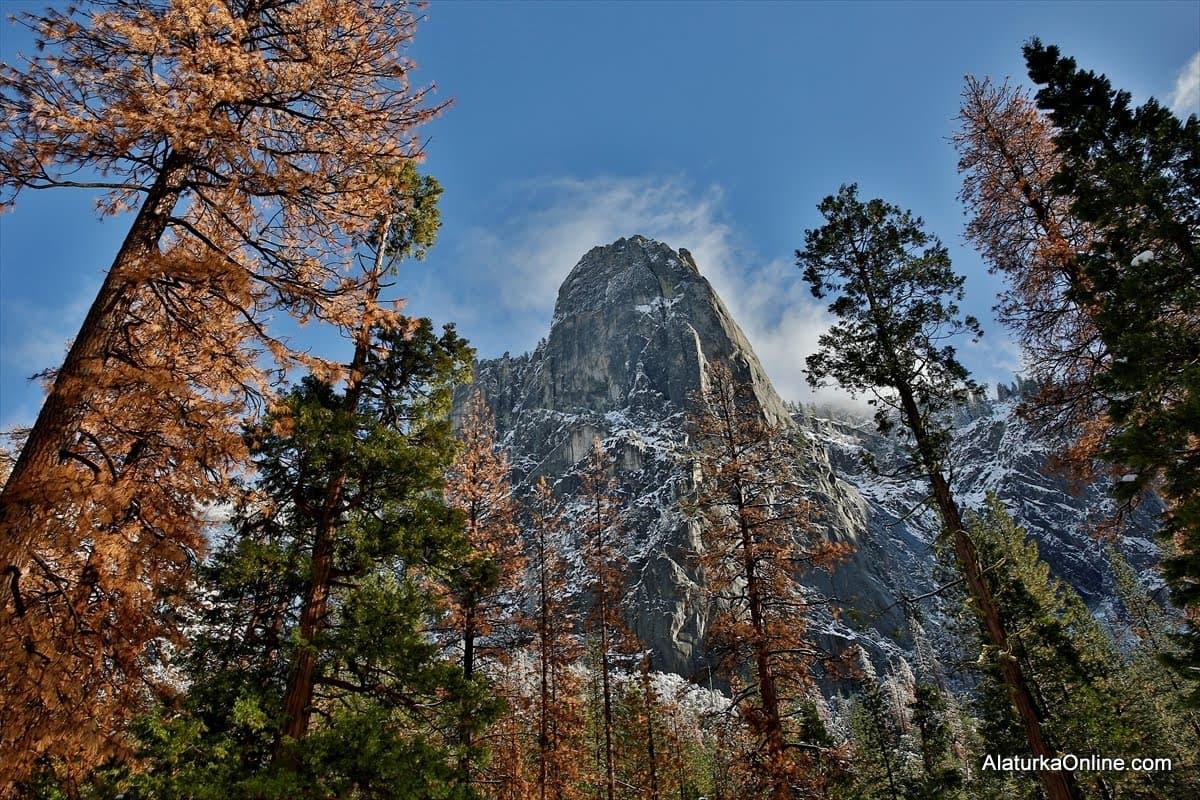 Yosemite Ulusal Parkı – Yosemite National Park