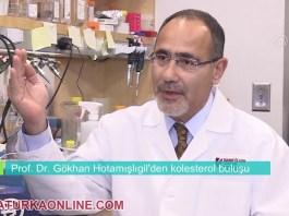 Prof. Dr. Gokhan Hotamisligil