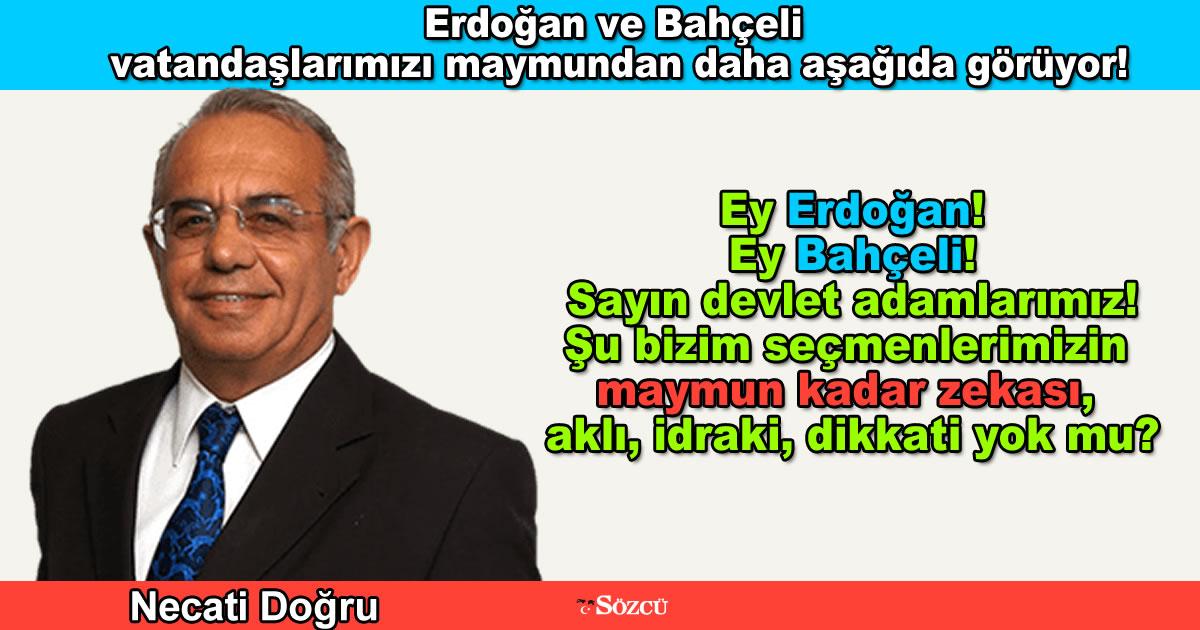 Erdoğan ve Bahçeli vatandaşlarımızı maymundan daha aşağıda görüyor!