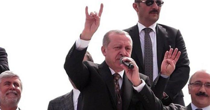 Erdogan Bozkurt Isareti
