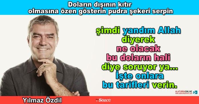 Dolarin disi citir olsun - Yilmaz Ozdil