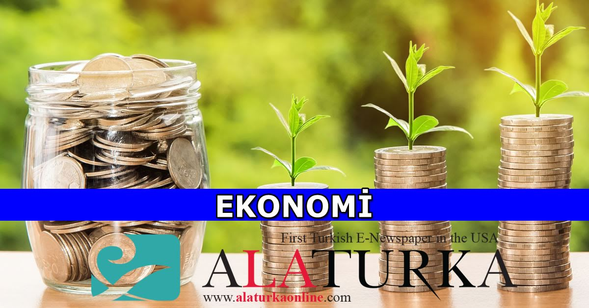 Turkey allocates $18.5B for 2021 investments