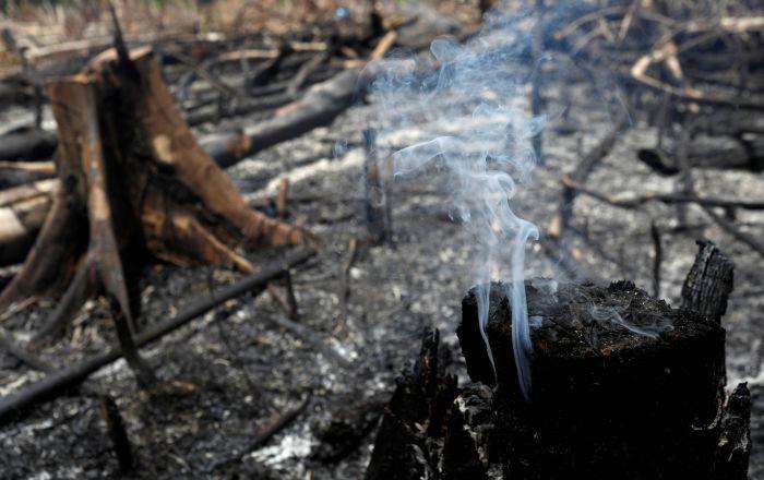 NASA verileri Amazonlar'da yangın yoğunluğunun rekor düzeye ulaştığını gösteriyor