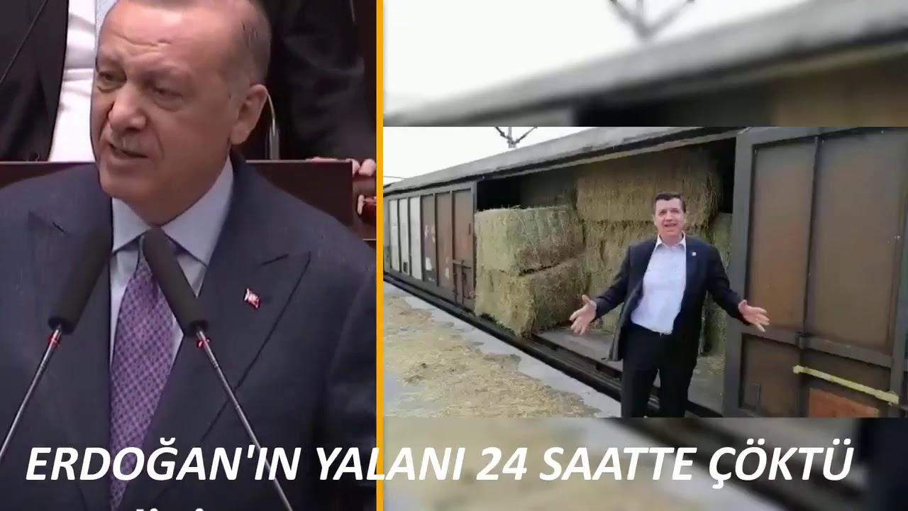 Erdoğan'ın Yalanı 24 Saatte Çöktü ! İşte Türkiye'nin Saman İthal Ettiği Görüntüler !