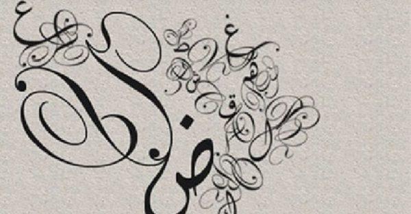 الافعال الخمسة والاسماء الخمسة الشرح بالامثلة