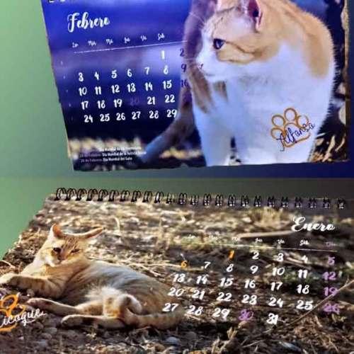 Calendarios CER 2020