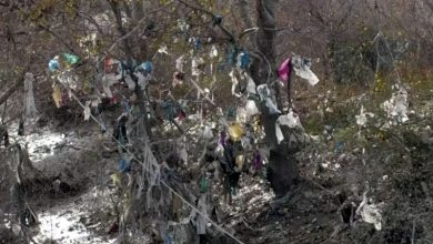 Rifiuti Di Plastica Nella Costa Albanese Albania