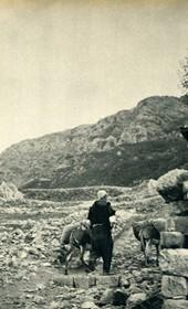 GM055: The fortress of Kruja (Photo: Giuseppe Massani, 1940).