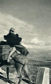 GM069: On the road near Elbasan (Photo: Giuseppe Massani, 1940).