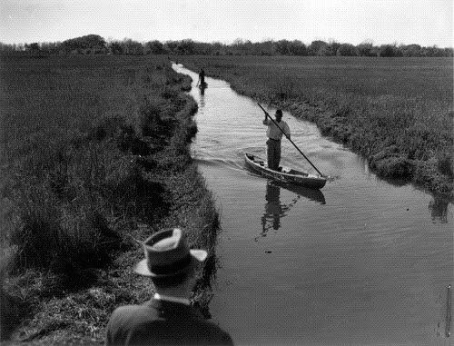 Pirogue Navigating Shallow Waters