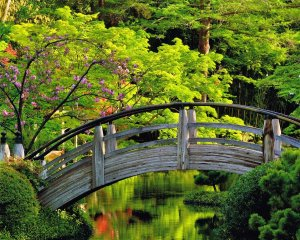 Antique Heart Cypress Moon Bridge