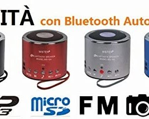 Mini Speaker Bluetooth Portatile Cassa Universale Radio, MP3, AUX