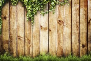 Why A Privacy Fence Is Worth It