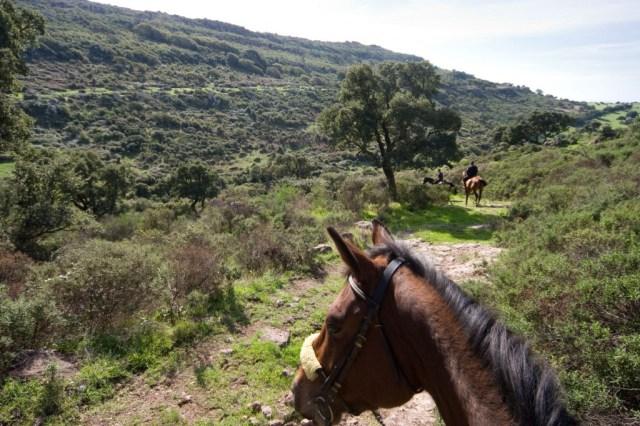 Passeggiata-a-cavallo-Villanova-IMG_3001