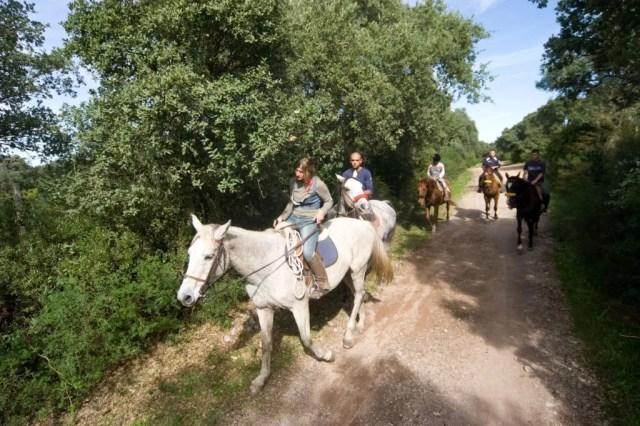 Passeggiata-a-cavallo-Villanova-IMG_3010