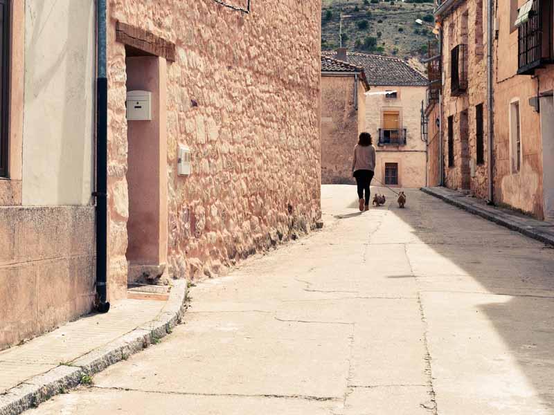 Albergue La Palaína. El entorno.