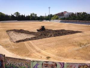 Estadio Baeza Cesped