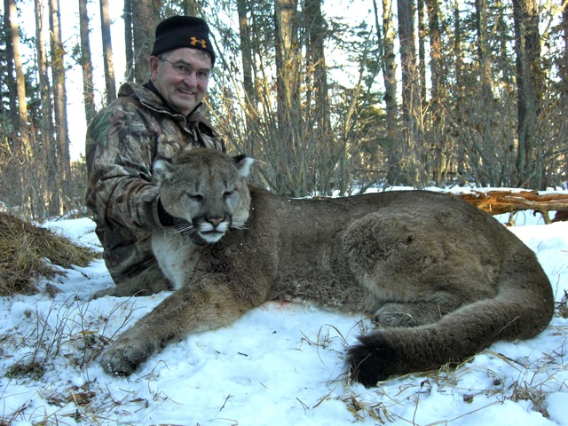 Texas Cougar Hunting