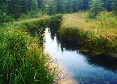 Switzer Provincial Park