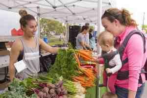 airdrie farmers market