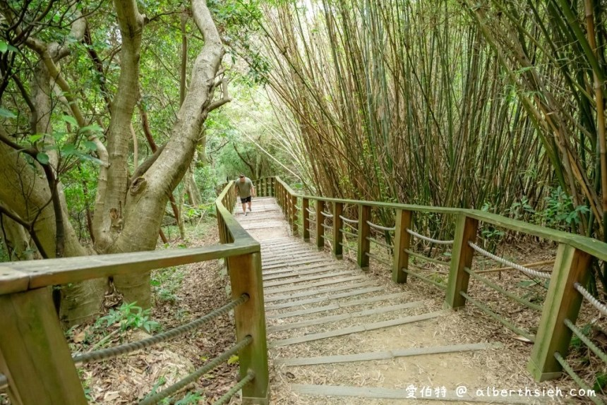桃園蘆竹景點.羊稠森林步道