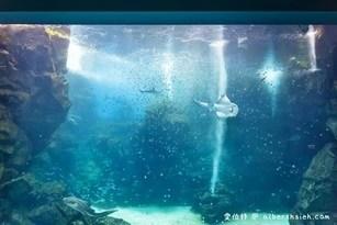 桃園水族館XPARK