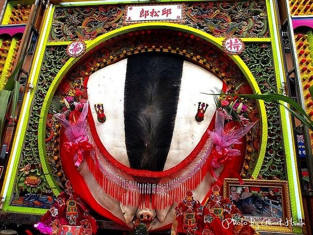 【祭典】桃園龜山.竹林山寺巡迴媽(龜山、鶯歌坪位正戲酬神慶典)