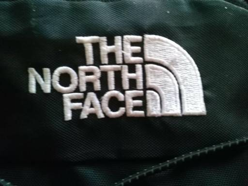 Motxilla The North Face: logo
