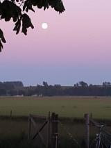 Månen går upp