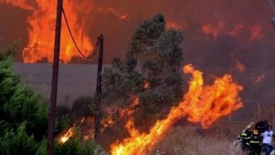 Photo of قريبا : الكشف عن تجهيزات حديثة لمكافحة حرائق الغابات