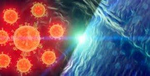 ?Quel impact du coronavirus sur l'environnement