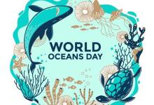 """Photo of الندوة الافتراضية الأولى تحت شعار """"حماية التنوع البيولوجي البحري والساحل في أفق تحقيق أهداف التنمية المستدامة لسنة 2030"""