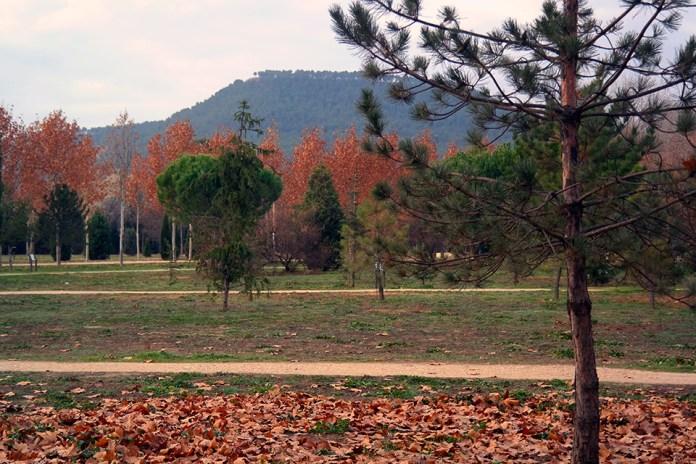 Últimos dias de otoño en El Arboreto de Alcalá de Henares