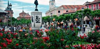 Exhuberancia floral en la plaza cervantina