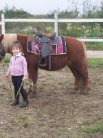 equitazione educativa codroipo 05 150x200 Equitazione Educativa in fattoria a Codroipo