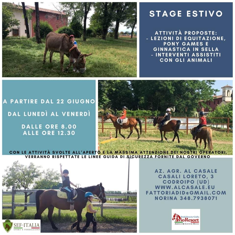 settimana a cavallo codroipo Settimana a cavallo alla Fattoria Didattica Al Casale di Codroipo per bambini   Centro Estivo