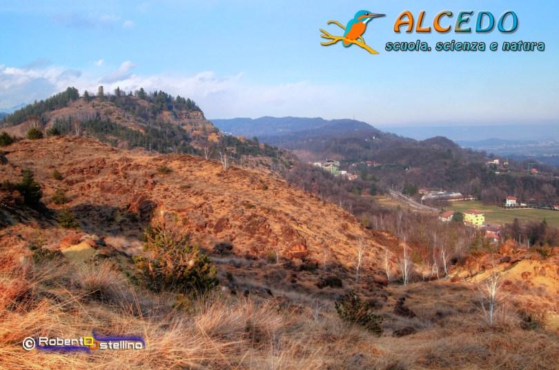 IMG_2717_8_9_tonemapped-1500 alcedo