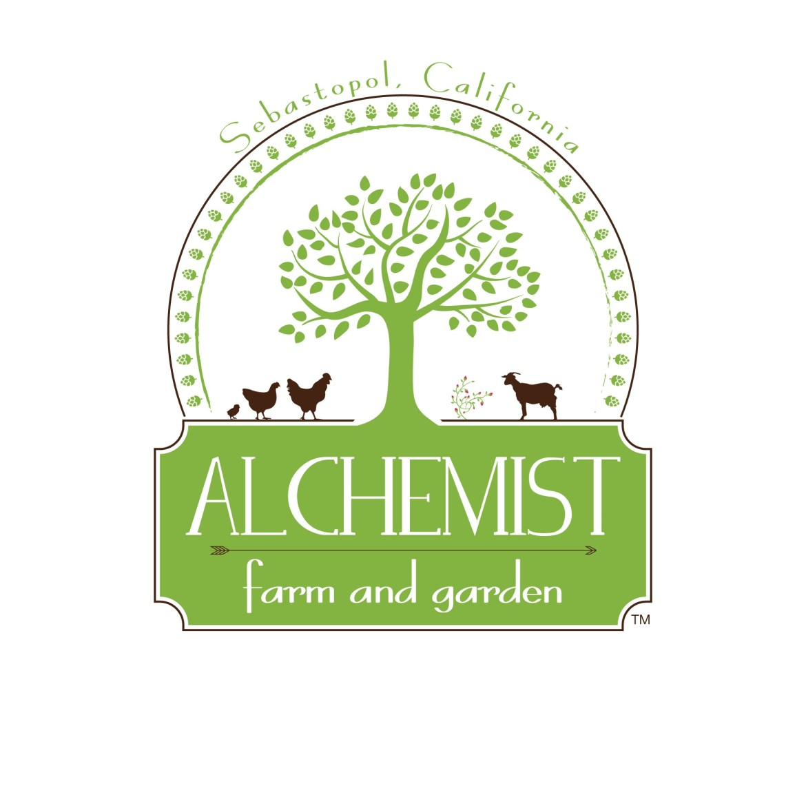 Alchemist-Logo-with-S-with-TM