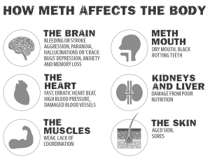 How Meth Affects the Body