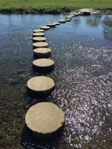 stepping stone theory