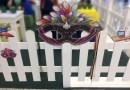 Alemanha é tema de eventos de Carnaval no Anhanguera Parque Shopping