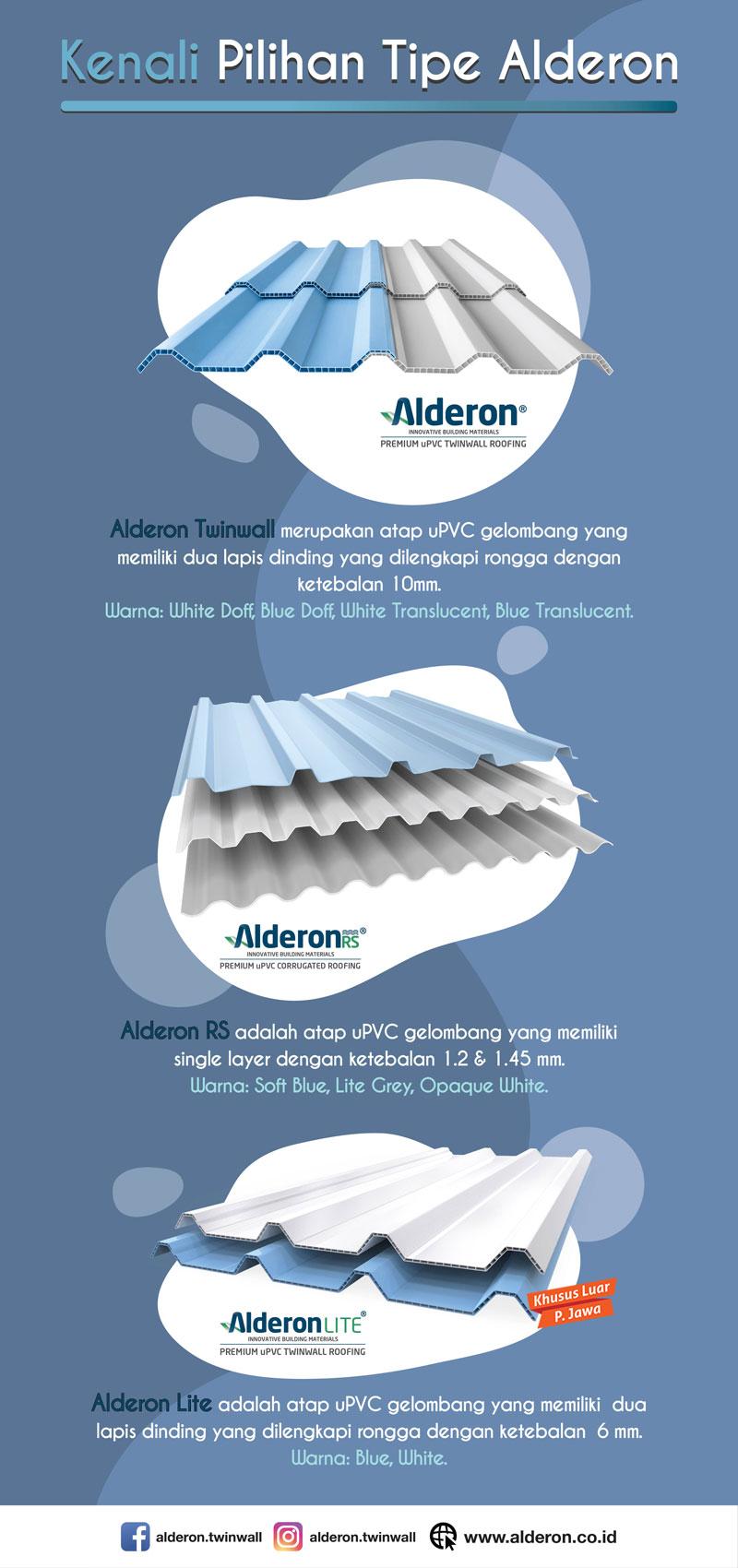 Infografik Pilihan Tipe Alderon