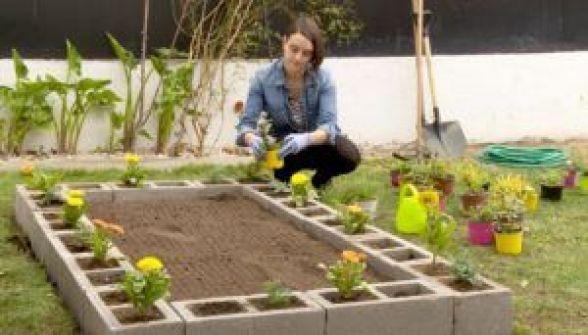 Comenzar un jardín desde cero