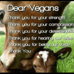 vegan means love for life and yourself