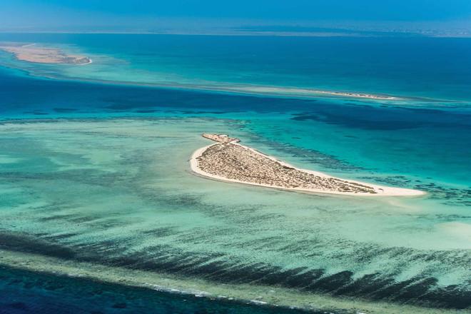 مشروع البحر الأحمر الوجه العالمي للسياحة السعودية صحيفة