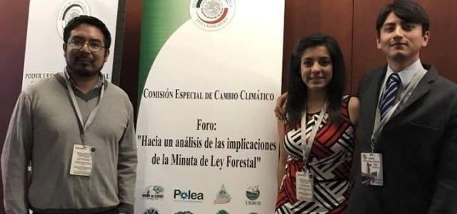 Jóvenes ecologistas queretanos debaten iniciativa del PVEM en el Senado de la República