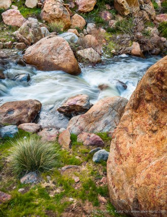 Boulder Creek -- Cleveland National Forest, near Santa Ysabel, California, USA